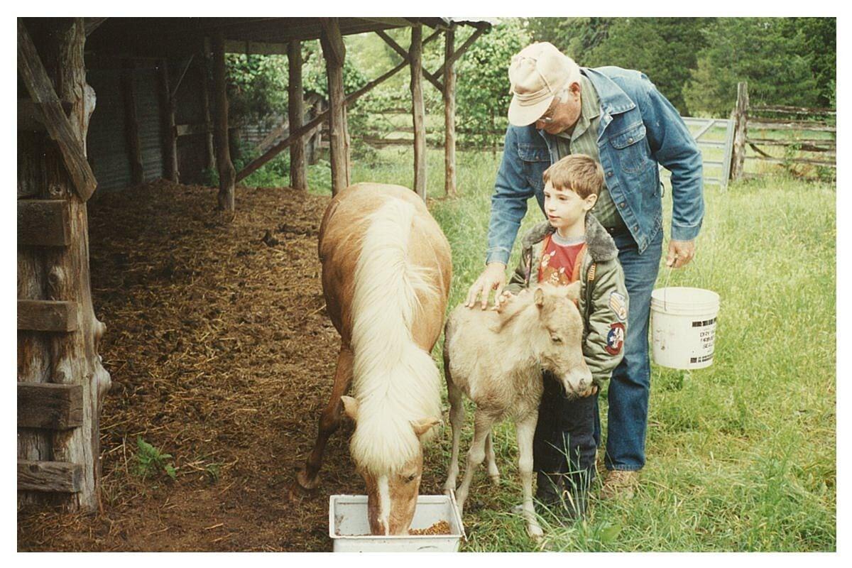 Horses - Farm and Ranch